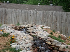Our waterfall of our goldfish pond