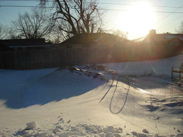Backyard at sunrise, after a blizzard the day before