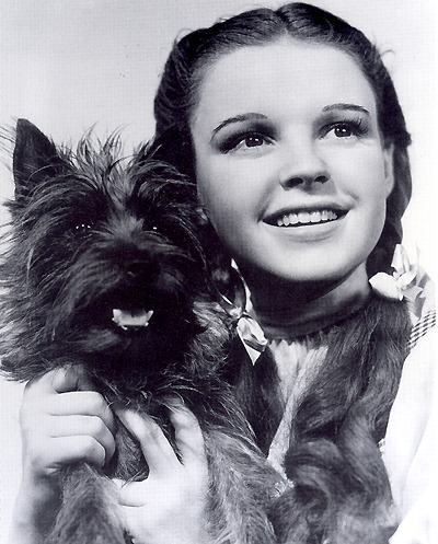 "Dorothy and Toto in ""The Wizard of Oz"""